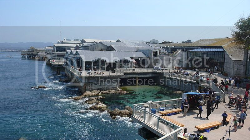 Places to visit in Monterey CA