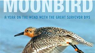 """Tapa del libro """"Un año al viento con B95, el gran sobreviviente"""", de Phillip Hoose"""
