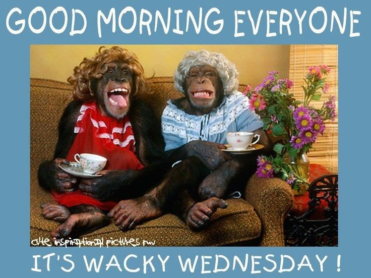 Good Morning Wednesday Pictures Photos And Images For Facebook