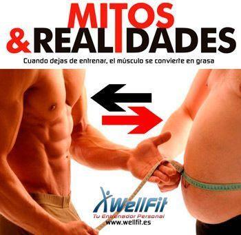 Mitos-y-Realidades-WELLFIT-entrenador-personal-marbella-14