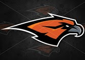 Skyridge-Falcons-logo 2