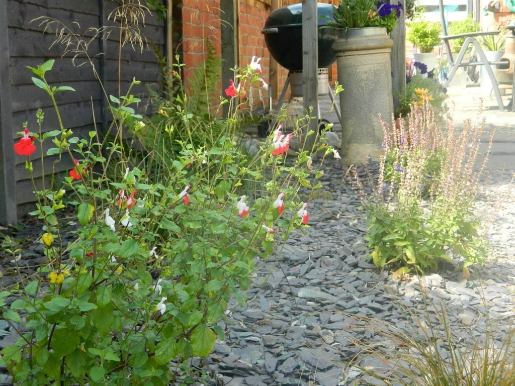 Homebase Garden Makeover Project The Final Reveal Love Chic Living
