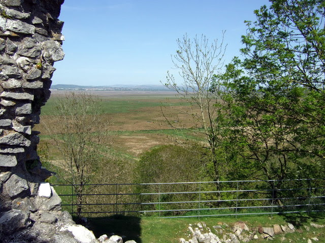 File:The salt marshes below Weobley castle - geograph.org.uk - 1311232.jpg