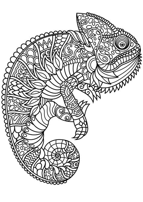 mandala animals ideas  pinterest adult