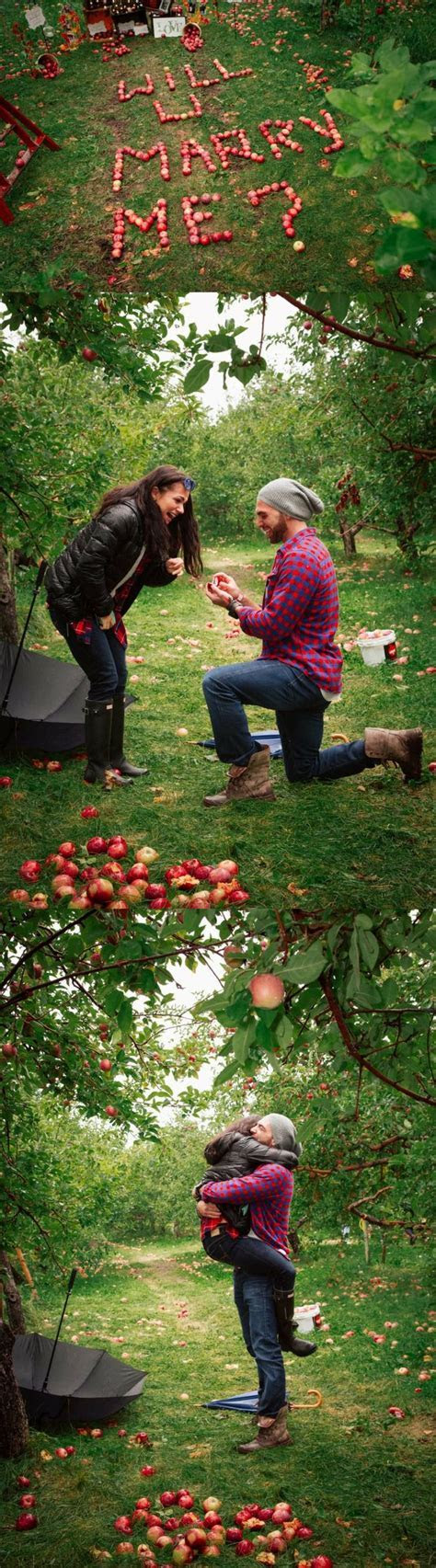 Best 20  Proposal ideas ideas on Pinterest   Wedding