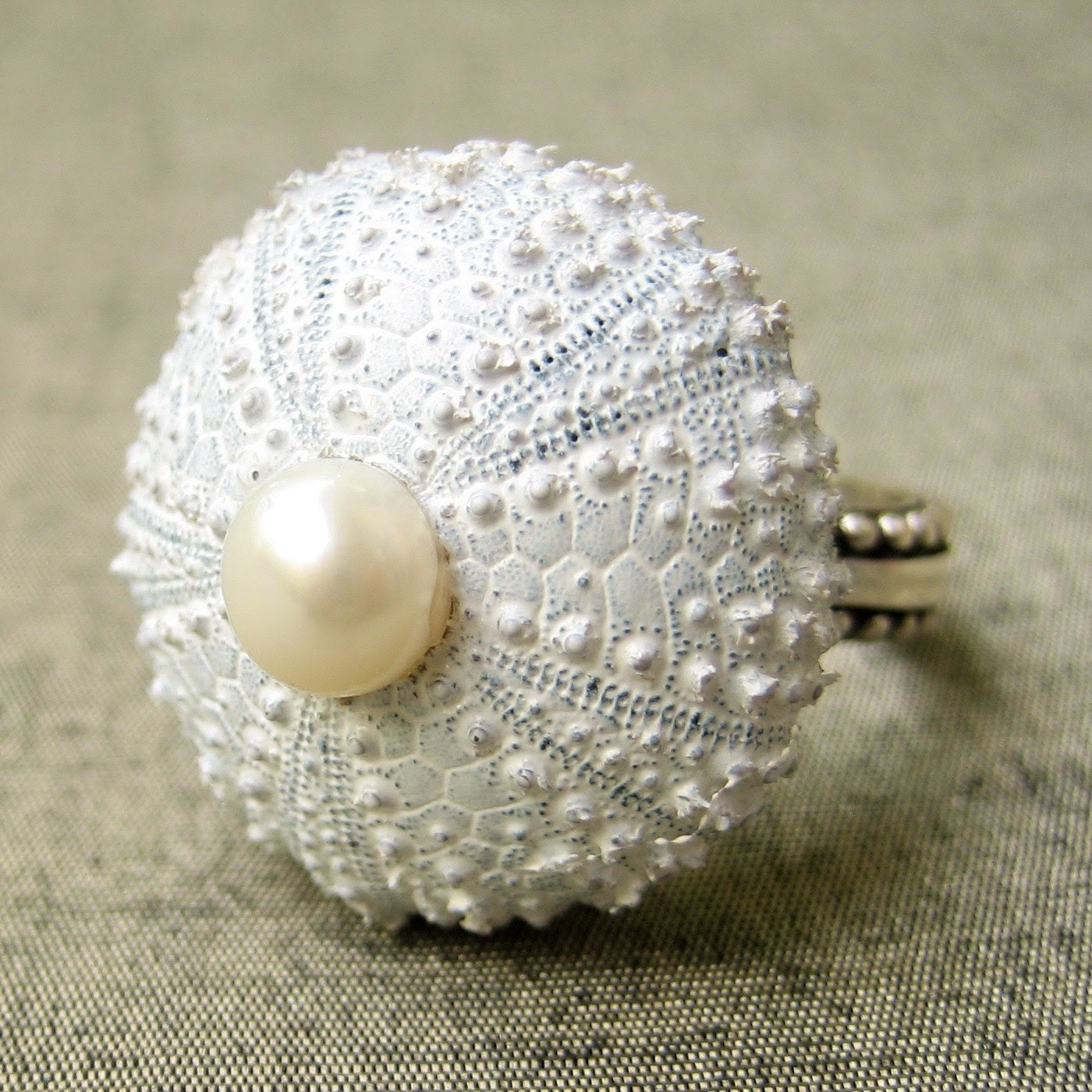 Sea Urchin Collection-Sterling Silver White Pearl Ring