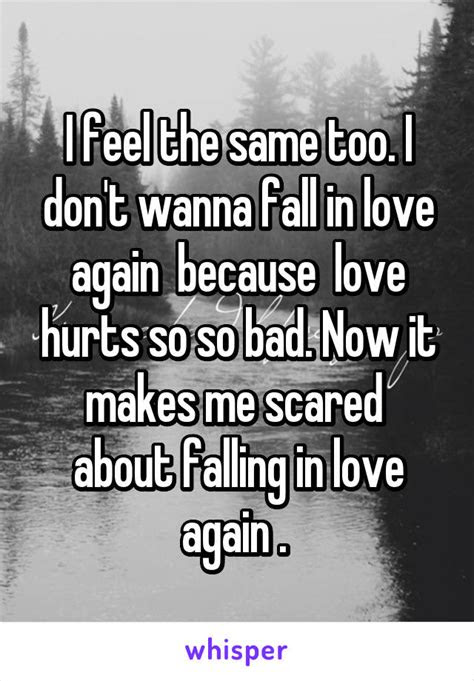 Wanna Fall In Love Again Quotes
