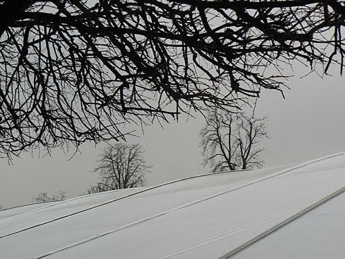paysage d'hiver aux tuileries.jpg