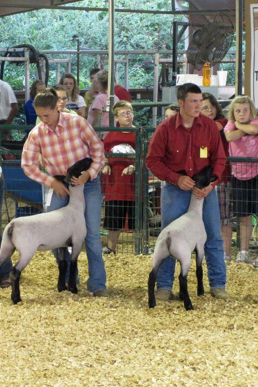 Polk County Fair 12