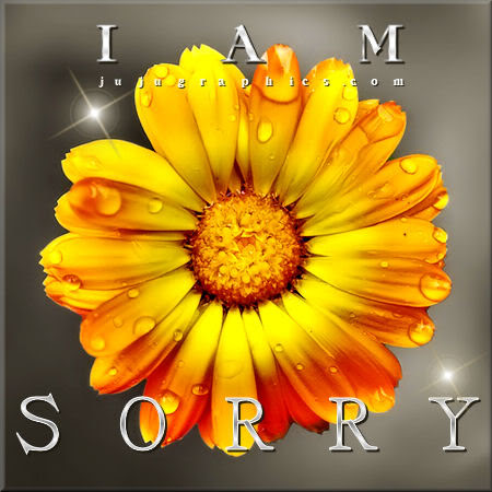 I Am Sorry 6 Graphics Quotes Comments Images Greetings For