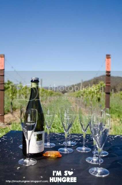 photo 1-pizzini-wines-1473_zpsa9560223.jpg