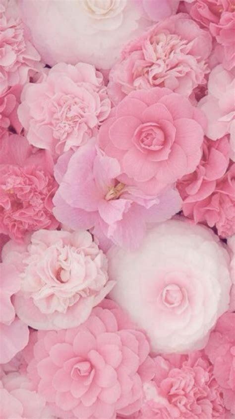 pink wallpaper iphone ideas  pinterest pink