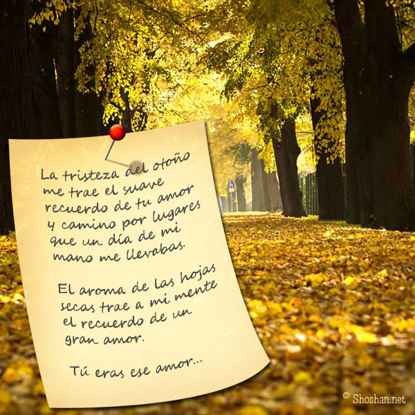 Imagenes Gratis Con Poema De Otono La Tristeza Del Otono Me Trae El