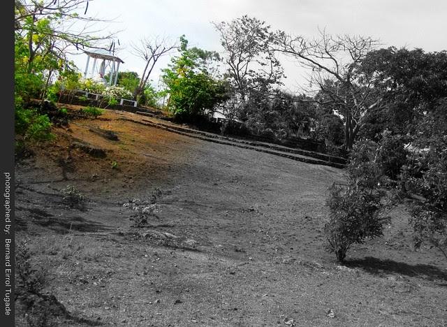 fatima hill 6