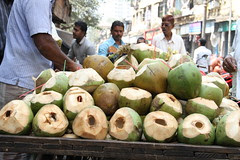 This Is Better Than Gin and Tonic ..Coconut Water Supersonic by firoze shakir photographerno1