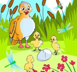 Mãe pata e os seus filhos