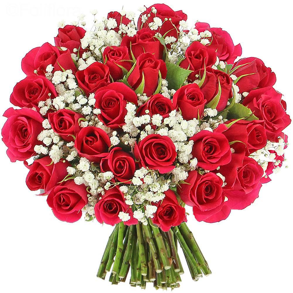Carte Anniversaire Gratuite Bouquet De Fleurs Fredda