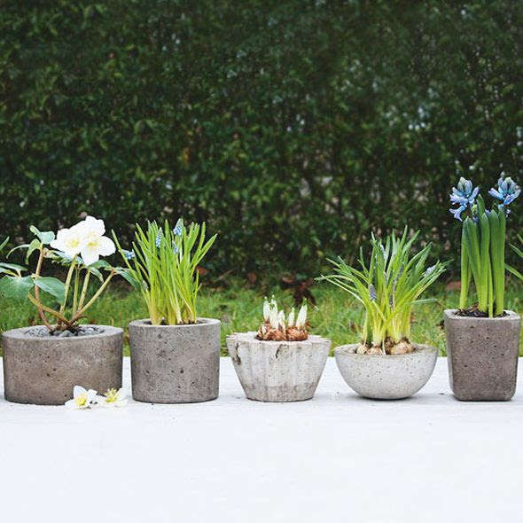Little Green Notebook: Concrete Planters