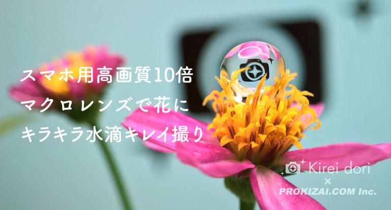 スマホ用高画質10倍マクロレンズで花にキラキラ水滴をキレイ撮り Kireidori