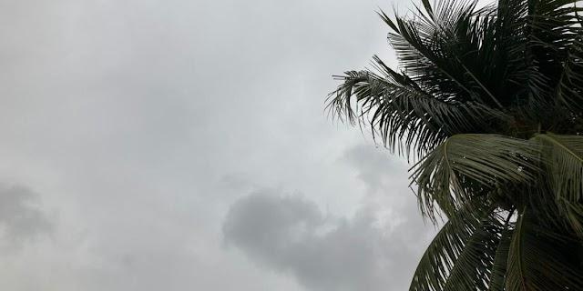 Chove em boa parte do Cariri nas últimas 24h; veja volumes