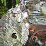 B-18 bomber Hike AMC July 24, 2010 engine in woods closeup