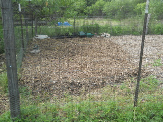 Finished Full Mulch of Garden 1