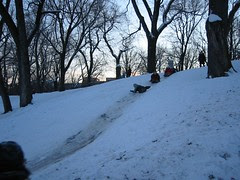 Sledding in Parc La Fontaine