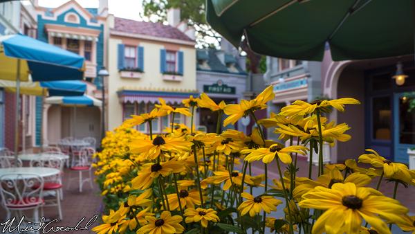 Disneyland Resort, Disneyland, Main Street U.S.A., Lockers, First Aid, Flowers