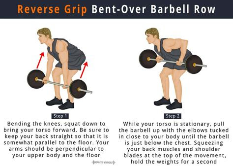reverse grip barbell row    benefits muscles