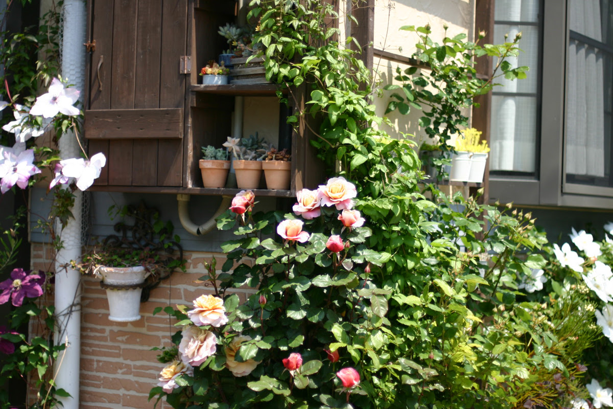 japanese-garden-idea