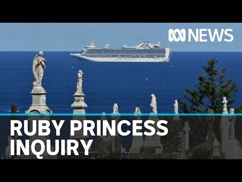Ruby Princess inquiry hears tearful apology from NSW Health official | ABC News