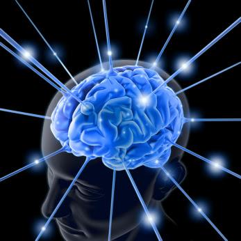 optimalisasi kinerja otak