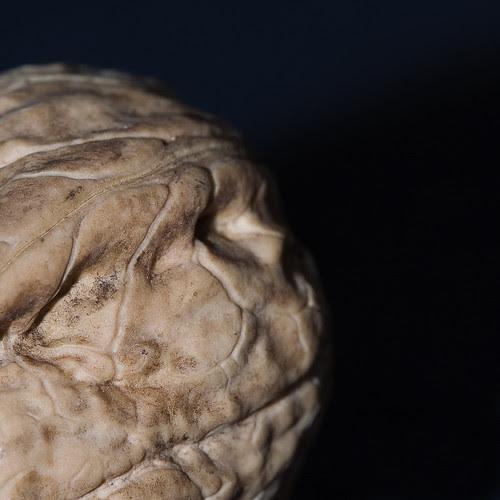 Walnut face