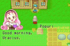 Harvest moon Friends of Mineral Town สูตรเกม
