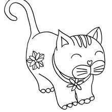 Dibujos Para Colorear Gatito Bonito Eshellokidscom