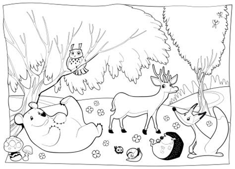 cartoon forest animal coloring pages coloring pages