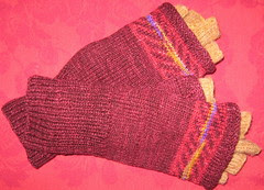 glove covers4a