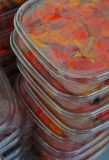 Petals in a Box (3)