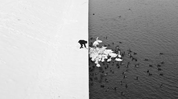 perierga.gr - Βραβευμένες φωτογραφίες που λένε πολλά!