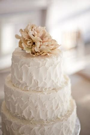 Wedding cakes, no fondant allowed   Squirrelly Minds