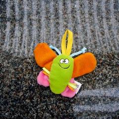 Little Lost Butterfly