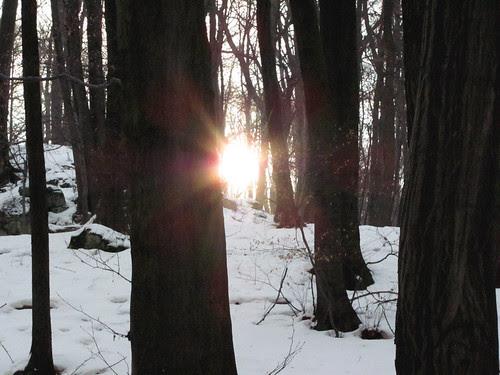 jan 6/31 - {sunny, frosty day}