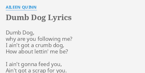 Dumb Dog Why Are You Following Me Lyrics