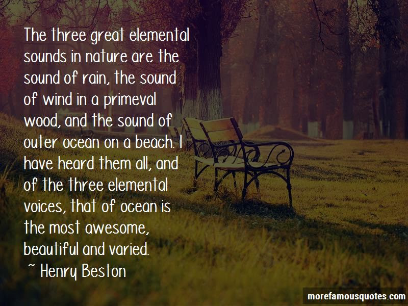 Quotes About Sounds Of The Ocean Top 24 Sounds Of The Ocean Quotes