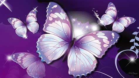 butterfly wallpapers  wallpapers