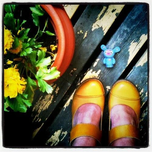 seth and shoe per diem