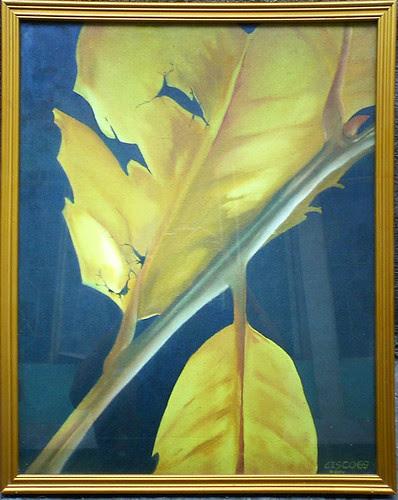decidousness of autumn leaves