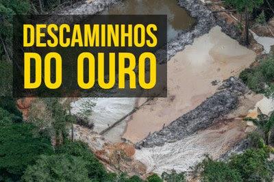 Rio cercado por árvores, muitas derrubada, e com barrancos de terra no leito do rio, resultado do assoreamento provocado pela mineração