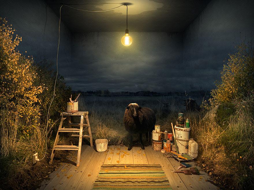 ilusiones-opticas-manipulacion-fotografica-eric-johansson (9)