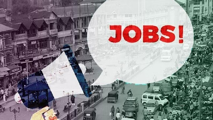 National fertilizers मध्ये 183 पदांवर भरती, अर्ज करा अन् नोकरी मिळवा